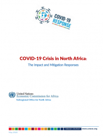 COVID-19 Crisis in North Africa: The Impact and Mitigation Responses