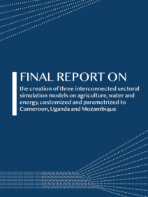 FINAL REPORT ON the creation of three interconnected sectoral simulation models on agriculture, water and energy, customized and parametrized to Cameroon, Uganda and Mozambique
