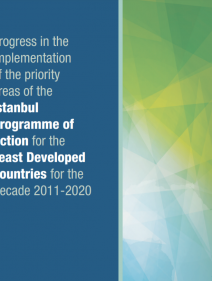 Progress in the implementation of the priority areas of the Istanbul Programme of Action for the least Developed Countries for the Decade 2011–2020