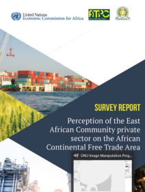 Survey report: Perception of the East African Community private sector on the African Continental Free Trade Area