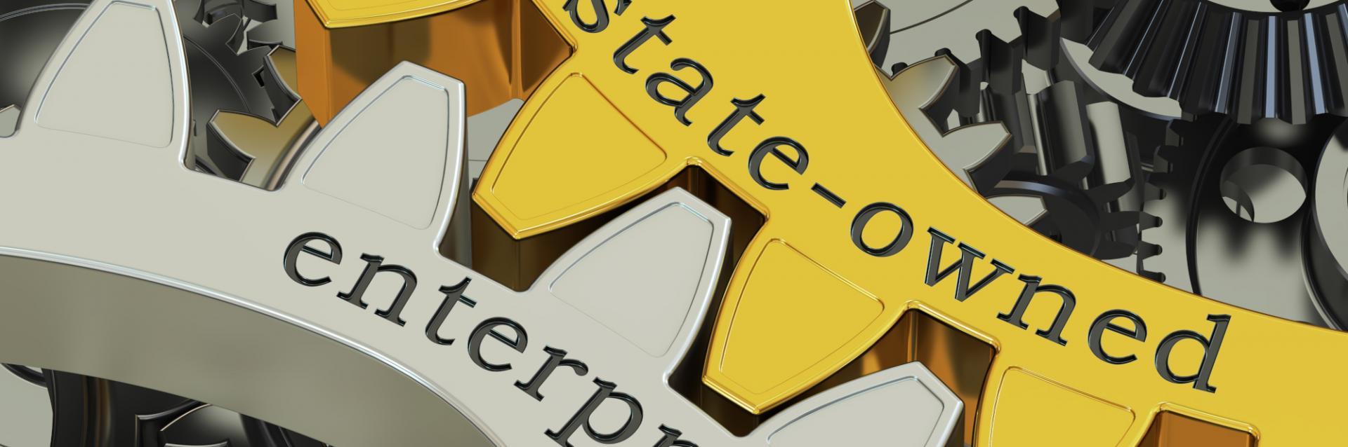 ECA Convenes a Virtual Validation Meeting on SOEs